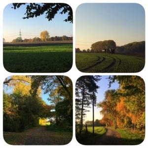 Herbst in Westfalen