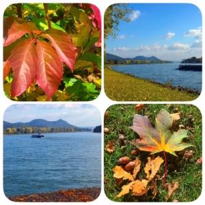 Herbst im Rheinland